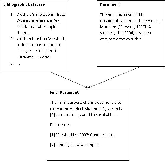 The bibliographic citation process